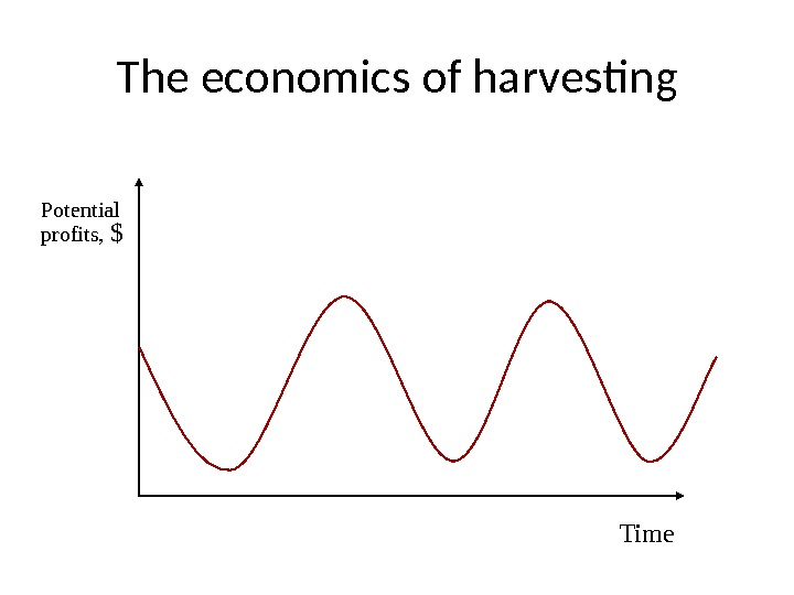 The economics of harvesting Time. Potential profits,  $