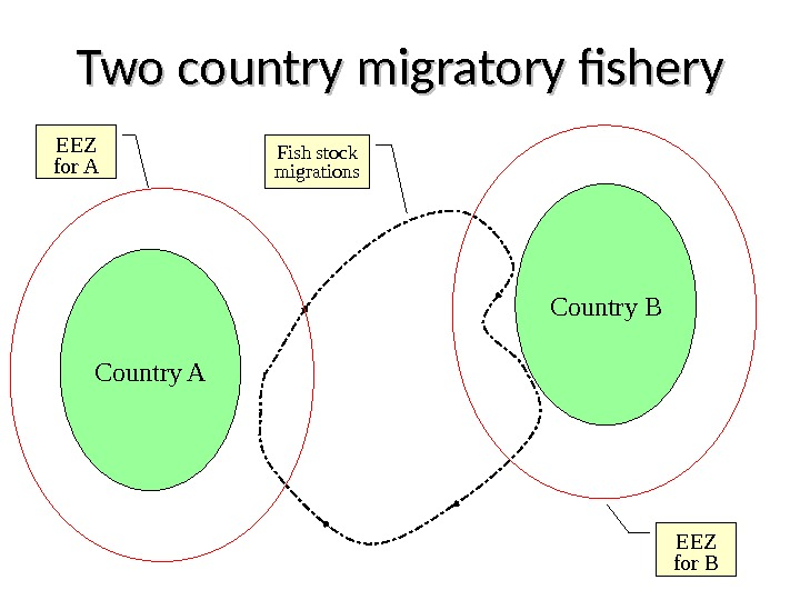 Two country migratory fishery Country A Fish stock migrations Country B EEZ for BEEZ for A