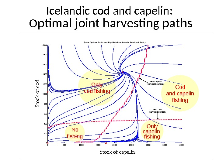 Icelandic cod and capelin:  O ptimal joint harvesting paths Only cod fishing Only capelin fishing.