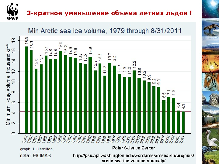 3 -кратное уменьшение объема летних льдов ! Polar Science Center http: //psc. apl. washington. edu/wordpress/research/projects/ arctic-sea-ice-volume-anomaly/