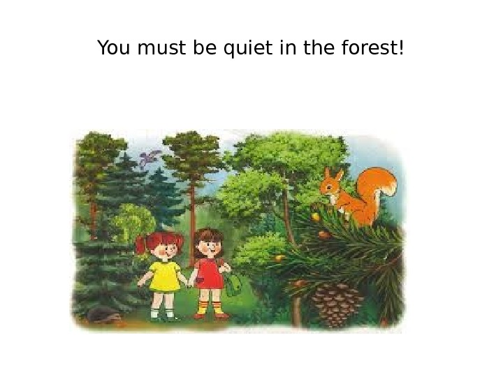 You must be quiet in the forest!