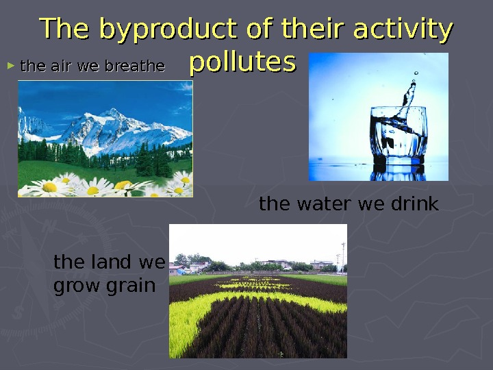 The byproduct of their activity pollutes  ► the air we breathe water we drink