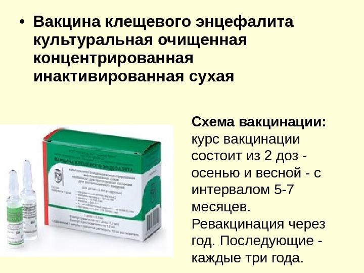 График прививок от клещевого энцефалита