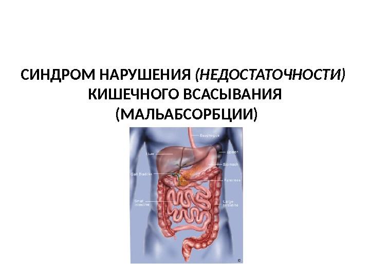 Функциональное нарушение кишечника как лечить