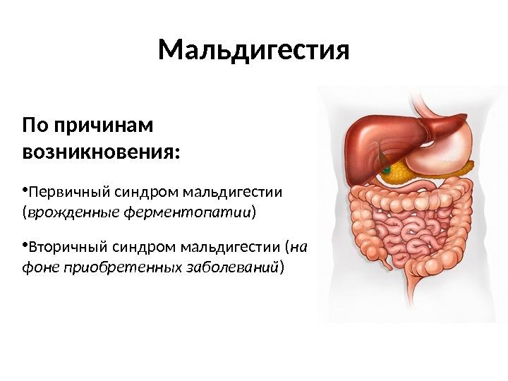 ОСНОВНЫЕ СИНДРОМЫ ПРИ ЗАБОЛЕВАНИЯХ КИШЕЧНИКА Основные синдромы
