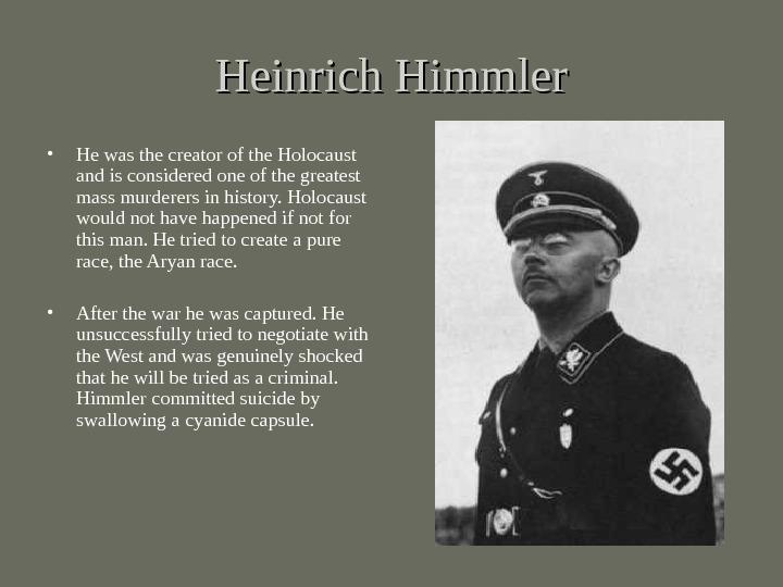 the holocaust heinrich himmler essay