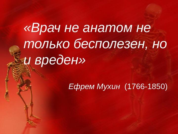 Анатомические цитаты