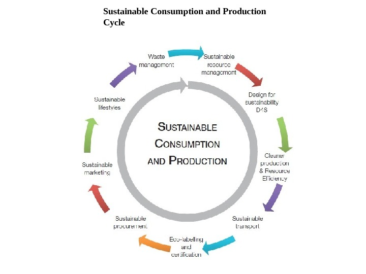 sustainable consumption the responsibility of consumers Responsibility, consumption this paper advances critical perspectives on the go vernance of sustainable consumption appear to place consumers and consumption.