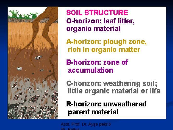 Asst prof dr ay e pekrio lu balk s soil for Soil 5 letters