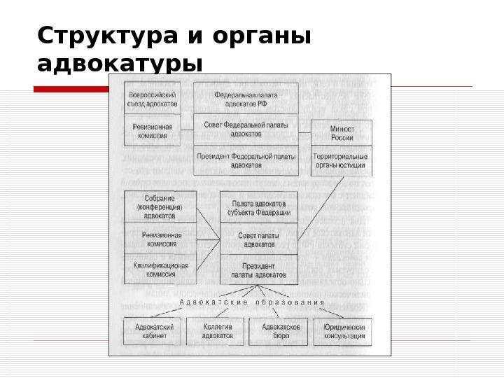 срок Структура адвокатской палаты субъекта рф минут