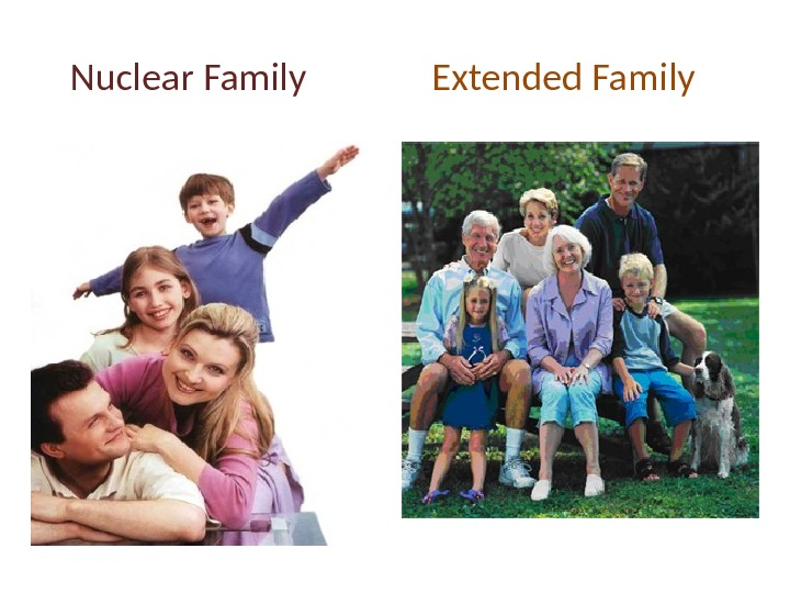 nuclear family vs extended family essay Best answer: i believe the nuclear family is your immediate family, mom dad sister brother extended family is grandma/pa cousins aunts uncles.