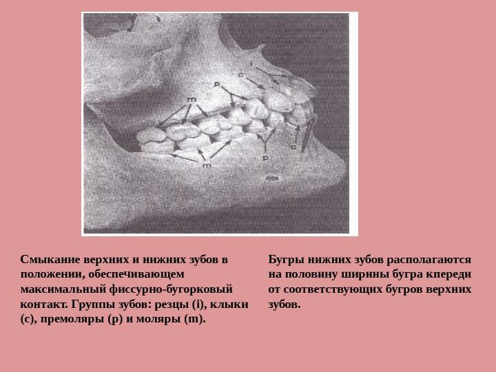 презентация мочекаменные болезни