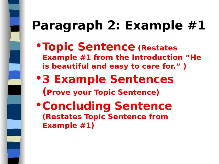 five paragraph essay movies