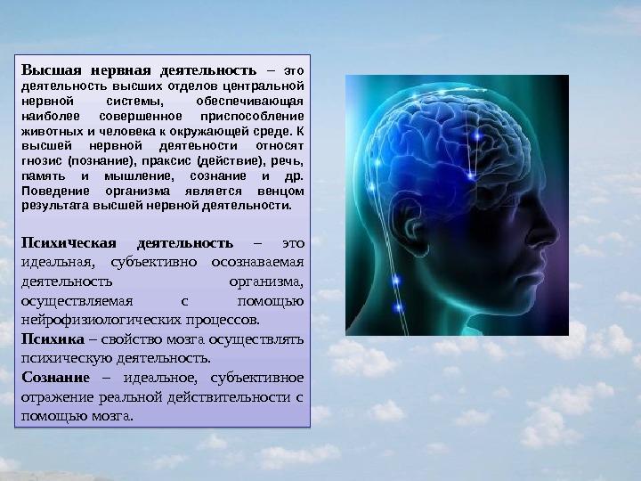 Фонсова Н А Дубынин В А Функциональная анатомия нервной системы  Контрольная работа по анатомия нарушение высшей нервной деятельности