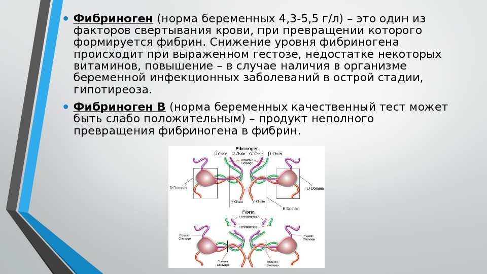 Фибриноген при беременности 2