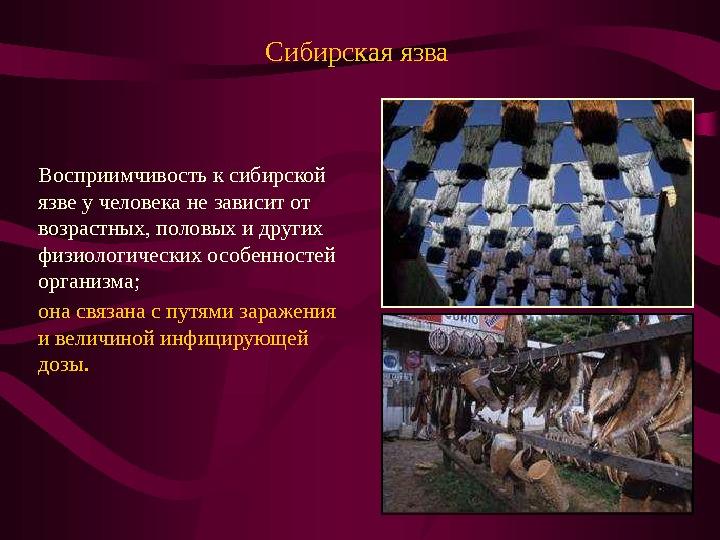 Презентация сибирская язва