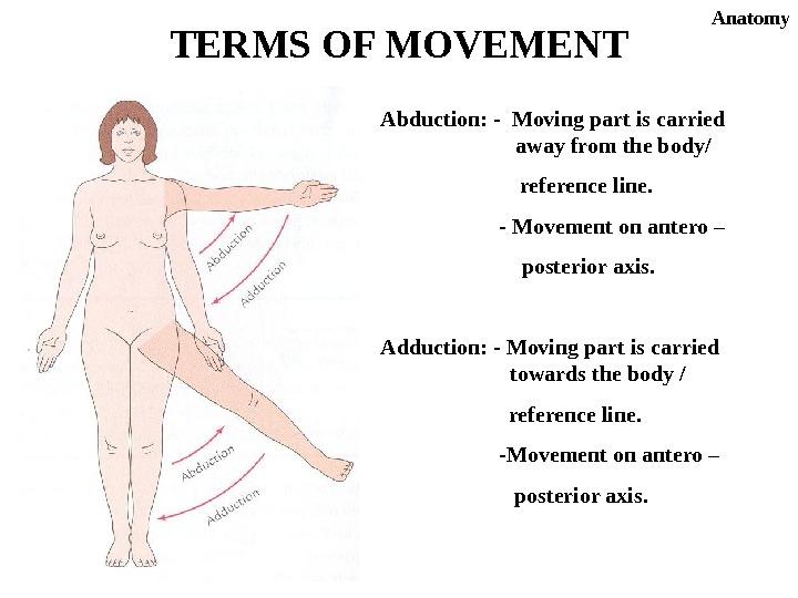 Introduction of anatomy