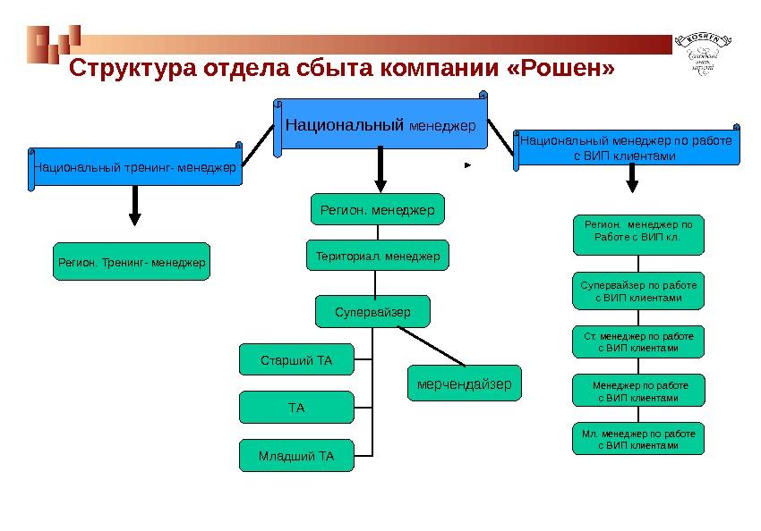 структура отдела продаж в компании термобелье