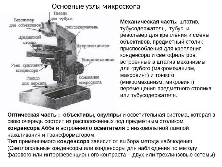 сне из чего состоит механическая часть микроскопа Нижнего Новгорода