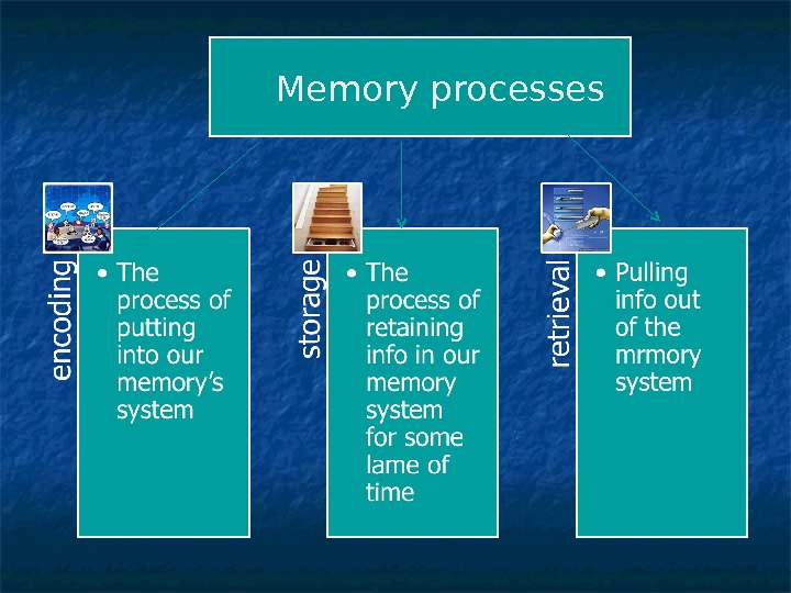 memory processes These specialists define learning as a process that will modify a subsequent behaviour: memory, on the other hand, is the ability to remember past experiences.