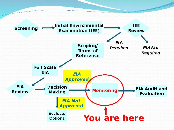 environmental impact assessmenteia Environmental impact assessment (eia) is the formal term for this due diligence environmental impact assessment in india on 27th january 1994, the eia regulations came into force for the first time.