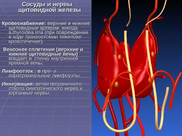 Усиленный сосудистый рисунок щитовидной железы