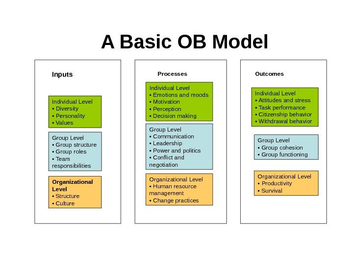 ob model essay