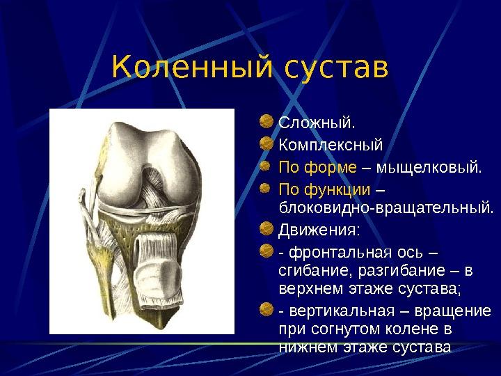 комплексные сустава