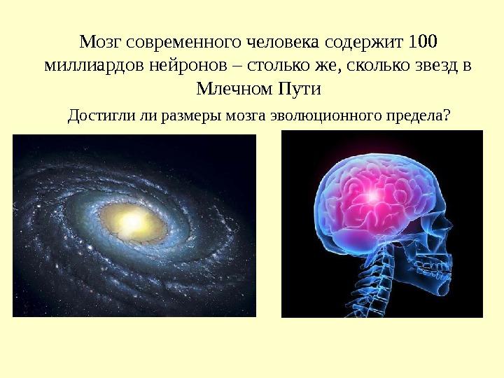 100 мозг