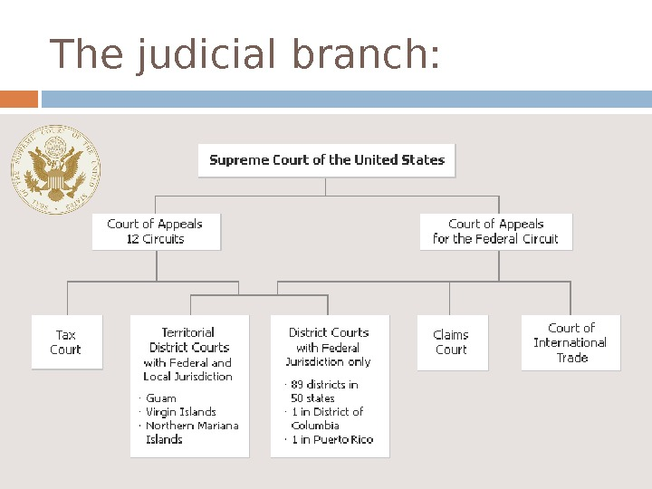 the evolution of the judicial branch in the us Equal branch of government the three previous chief justices (john jay, john rutledge, and oliver ellsworth) had minimal legacies beyond setting up the forms of office the supreme court, like many state supreme courts, was a minor organ of government in his 34-year tenure, marshall gave it the energy and weight of a third co.