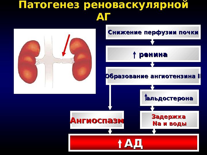 Стандарты лечения гипертонической болезни - Здоровое