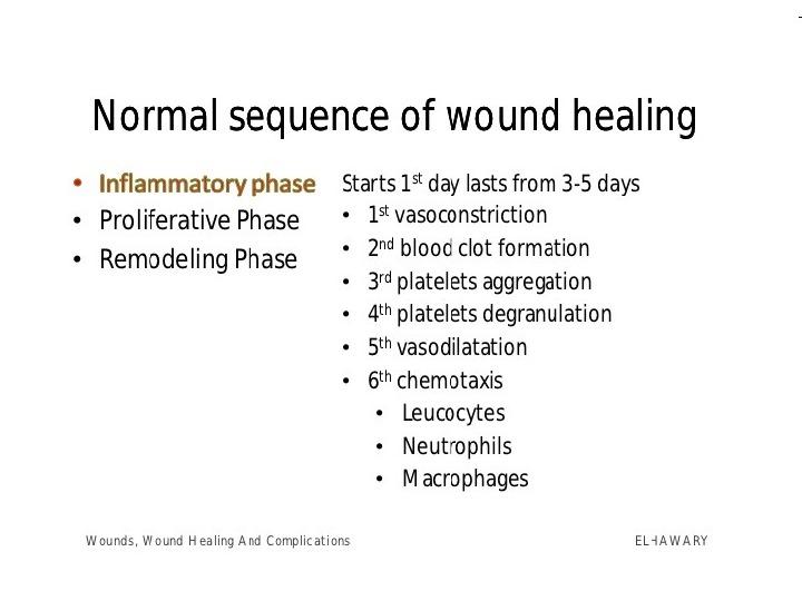 skin wound healing overview hemostasis inflammatory phase