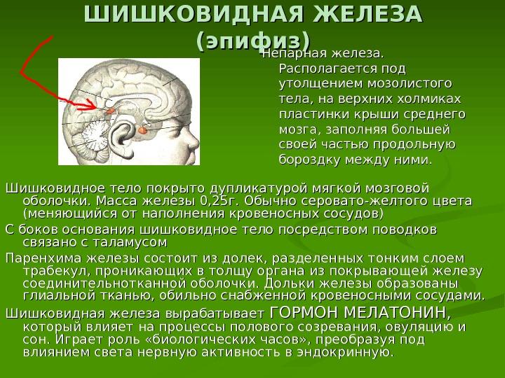 Кистозное образование шишковидной железы