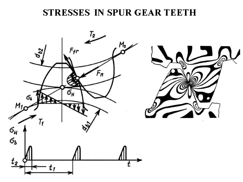 CALCULATION OF STRAIGHT SPUR GEARS FOR STRENGTH FORCES