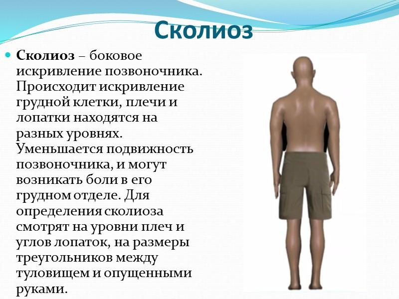 Рефлексы подразделяются на соматические, заканчивающиеся сокращением скелетных мышц, и вегетативные, в результате которых меняется