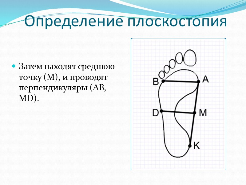 В специальных отверстиях между позвонками передние и задние корешки соединяются, образуя единый смешанный спинномозговой