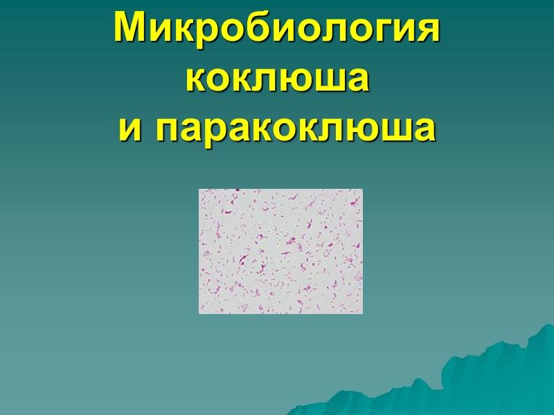 Лабораторная диагностика коклюша и паракоклюша