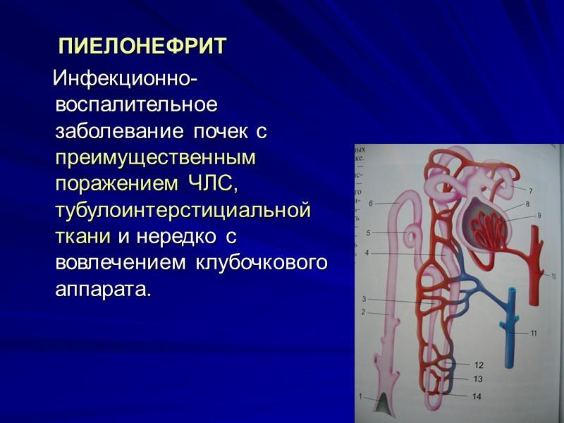 Диагностика    ОАМ. протеинурия и гематурия. Плотность мочи не меняется.