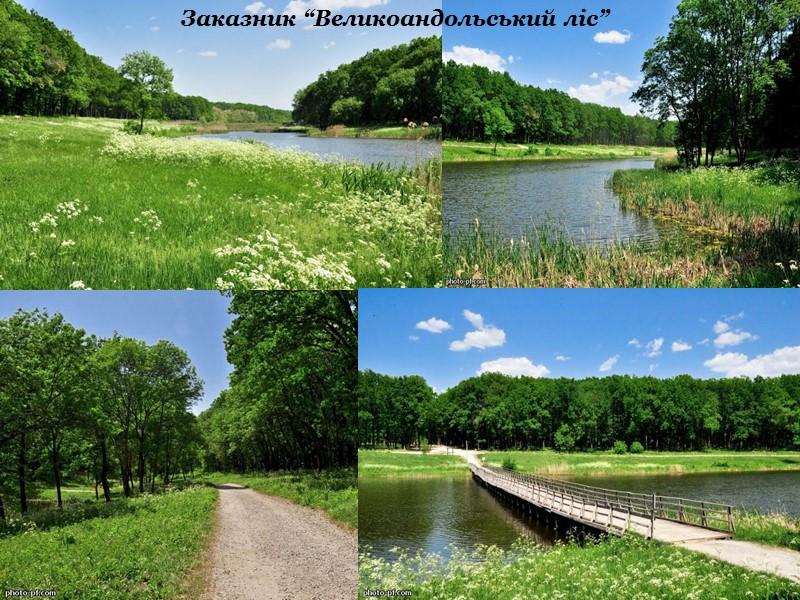 Заповідник «Крейдяна флора» між селами Закітне та Пискунівка
