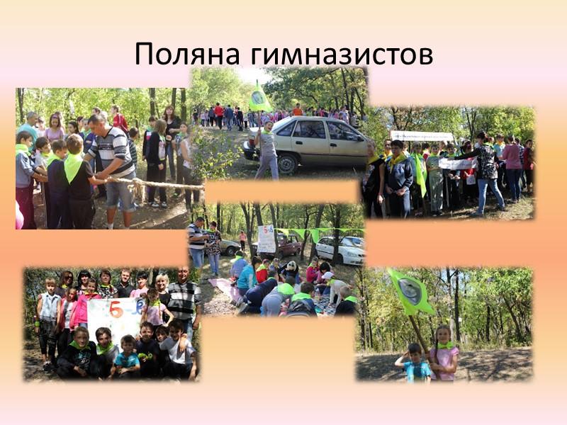 Ученики класса принимали участие в предметных олимпиадах, проводимых в гимназии Математика- Володыгина Анна, 3