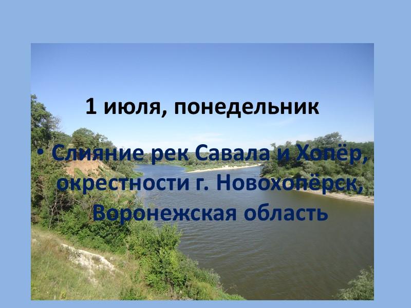 Урюпинский художественный КРАЕВЕДЧЕСКИЙ МУЗЕЙ