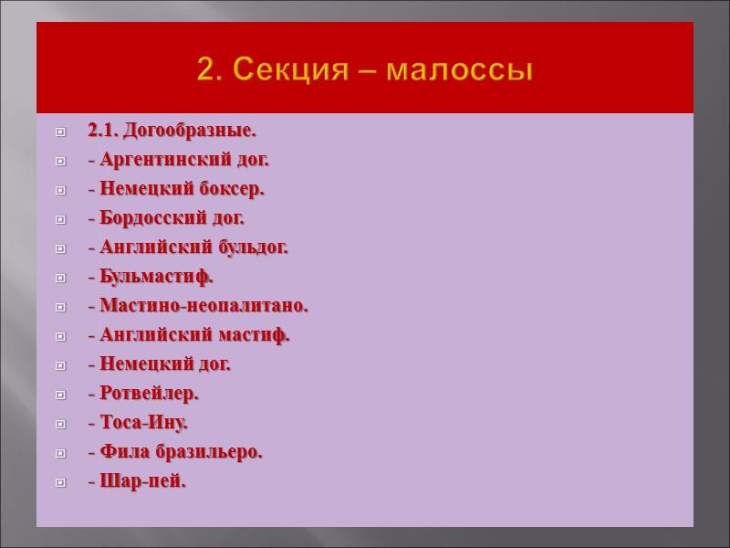 Англо-русская гончая