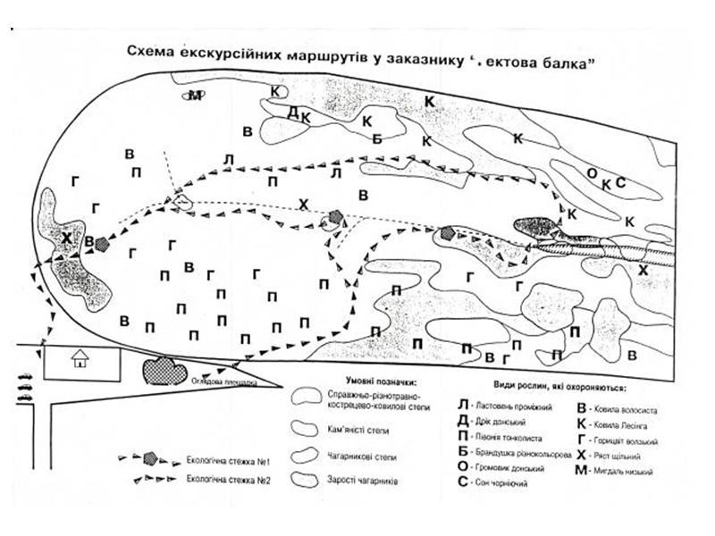 Проростання воронців в диких умовах на даній території призвело до створення гербу Добропільського району