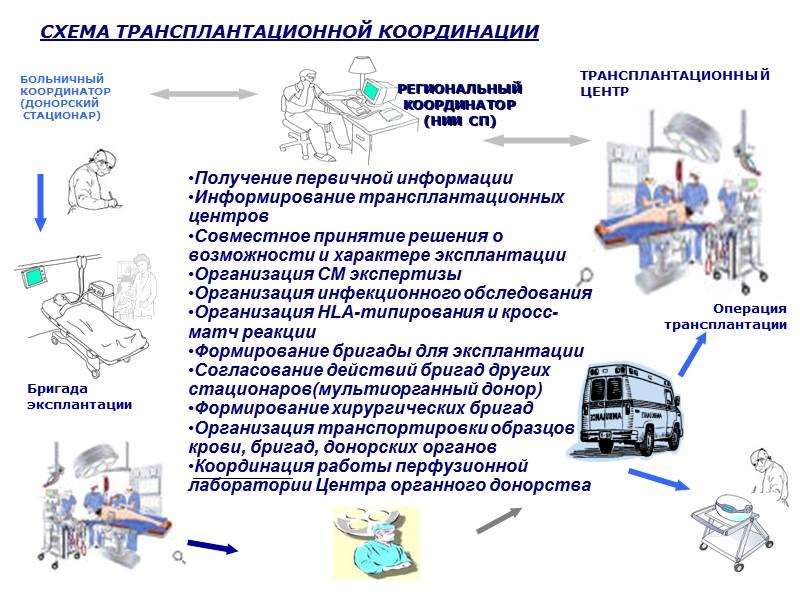 Донорский пул и  эффективные доноры в Санкт-Петербурге, 2004  Умершие от тяжелой ЧМТ-593