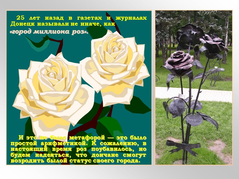 В землях верховья Кальмиуса был уголь, невдалеке, в районе Каракуба (ныне город Комсомольск Старобешевского