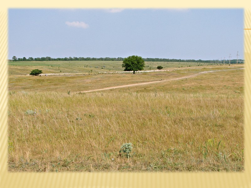 От понтической трансгрессии Чёрного моря на Донецкой возвышенности остались слои известняков.