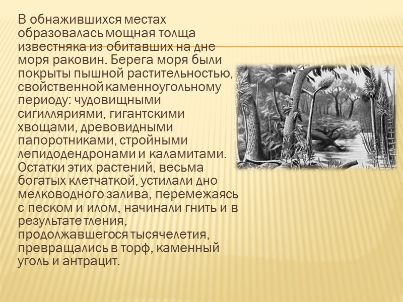 Могила-Гончариха — отдельный изолированный холм в Донецкой области Украины. Высота холма составляет 278 метров.