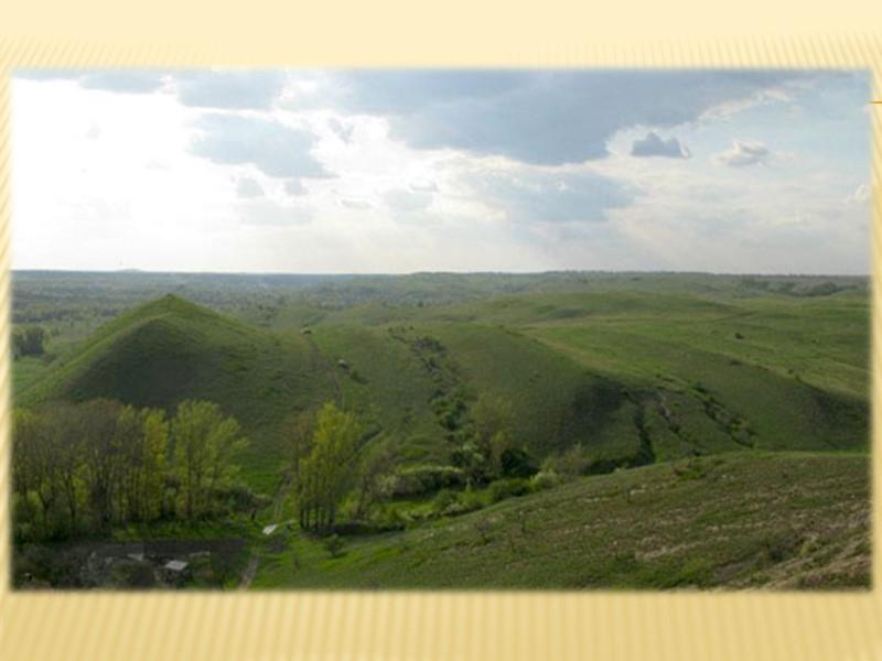 Безбрежная волнистая степь… Выжженные солнцем и иссушенные восточными ветрами-суховеями типчаково-ковыльные и полынные травы, оголенные