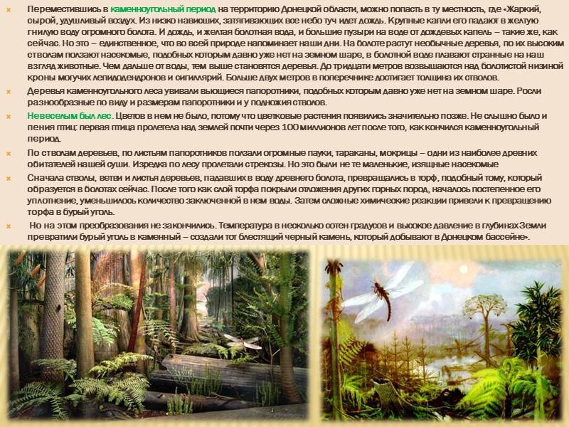На востоке в процессе горообразования образовалась Донецкая складчатость. Донецкая складчатость образовалась в эпоху герцинской
