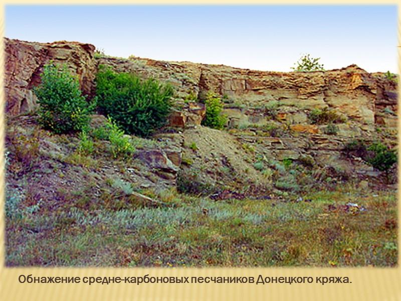 Рельеф преимущественно равнинный (высотой до 200 метров ), расчленённый оврагами и балками. На северо-востоке
